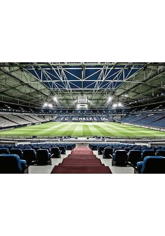 Wall-Art Vliestapete »Schalke 04 Arena Tribüne« kaufen