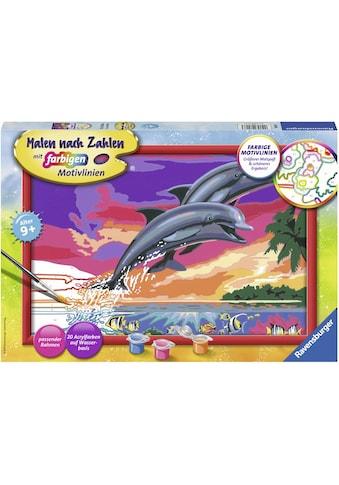 Ravensburger Malen nach Zahlen »Welt der Delfine«, Made in Europe, FSC® - schützt Wald... kaufen