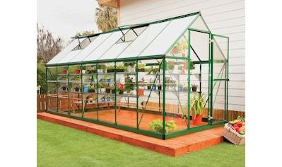 PALRAM Gewächshaus »Hybrid«, Größe 5, B/T/H: 185/426/208 cm, grün kaufen