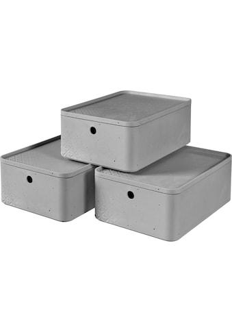 Curver Aufbewahrungsbox »BETON M«, (Set, 3 St.), stapelbar, je 8 Liter kaufen