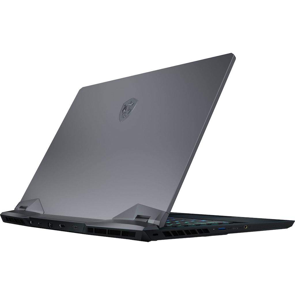 MSI Gaming-Notebook »GE66 Raider 10UH-260«, (2000 GB SSD)