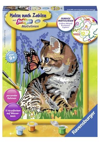 Ravensburger Malen nach Zahlen »Katze mit Schmetterling«, Made in Europe kaufen