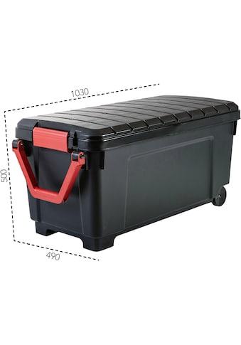 IRIS OHYAMA Aufbewahrungsbox »SIA1000« kaufen