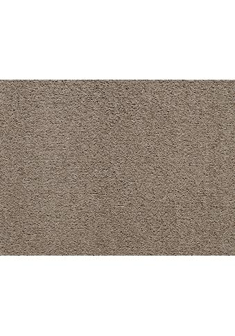 Andiamo Teppichboden »Verona«, rechteckig, 6 mm Höhe, Meterware, Breite 400 cm,... kaufen