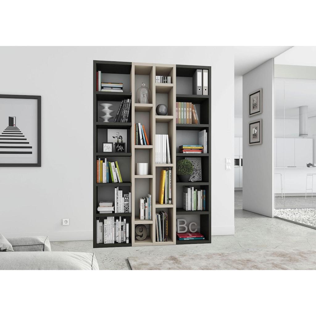 fif möbel Raumteilerregal »TOR391-2«, Breite 145 cm