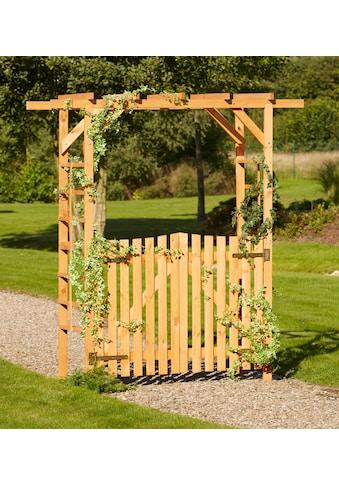PROMADINO Holzrosenbogen »Pergola Anke«, BxTxH: 200x60x210 cm, mit Türen kaufen