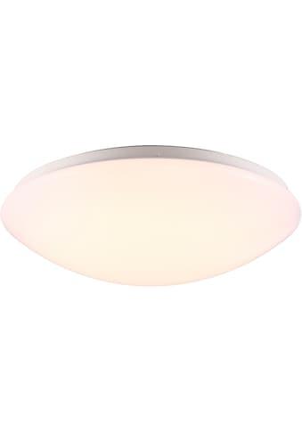 Nordlux LED Deckenleuchte »Ask 36«, LED-Board, Warmweiß, LED Deckenlampe kaufen