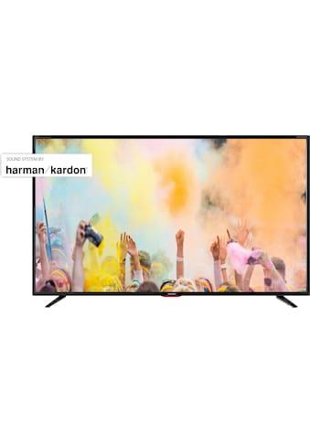 Sharp 55BJ5E LED - Fernseher (139 cm / (55 Zoll), 4K Ultra HD, Smart - TV kaufen