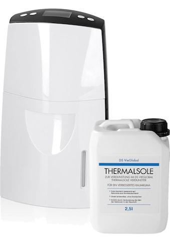 DS VieGlobal Luftbefeuchter »Thermalsole-Verdunster«, 2,5W weiß/grau kaufen