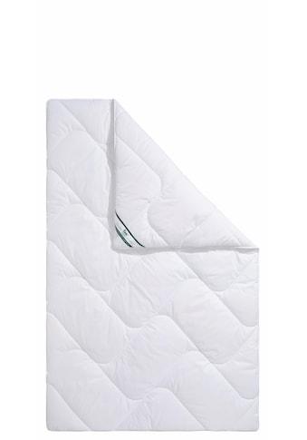 f.a.n. Schlafkomfort Kunstfaserbettdecke »Hollofil Active«, warm, (1 St.), ideale... kaufen