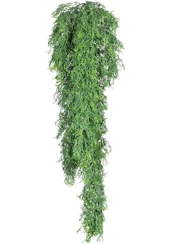 Creativ green Kunstranke »Russeliahänger« kaufen