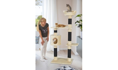 ABUKI Kratzbaum »Sam«, BxTxH: 61x50x147 cm kaufen