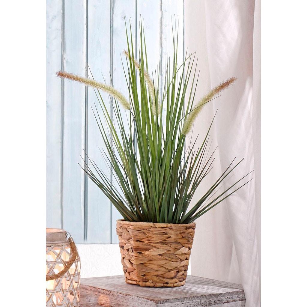 I.GE.A. Kunstpflanze »Gras«