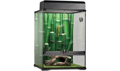 Exo Terra Terrarium »Bamboo Forest Kit«, BxTxH: 48x47,5x63 cm kaufen