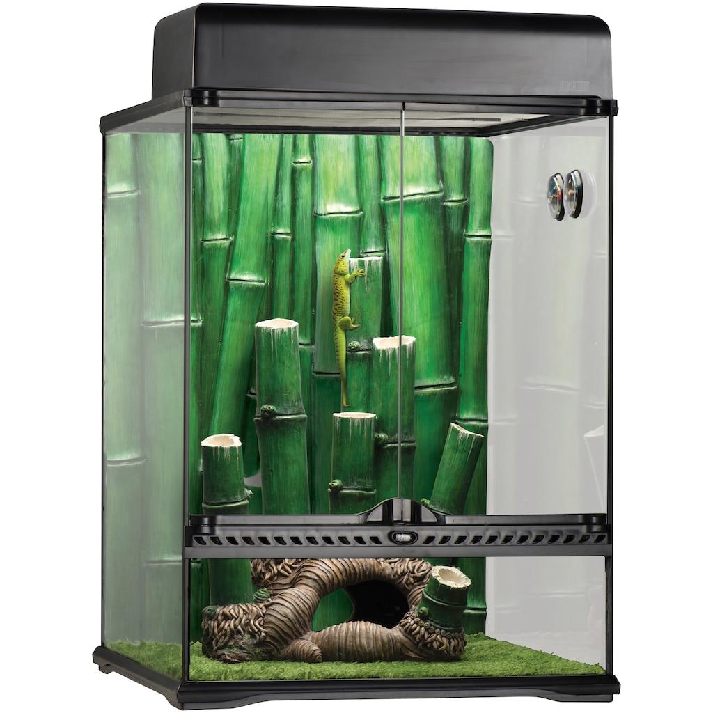 Exo Terra Terrarium »Bamboo Forest Kit«, BxTxH: 45x45x60 cm