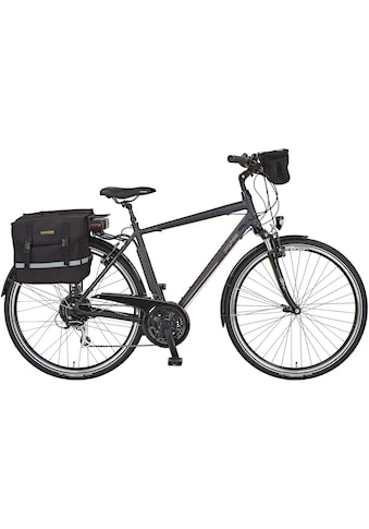 Prophete E - Bike »Entdecker e900«, 24 Gang Shimano Acera Schaltwerk, Kettenschaltung, Heckmotor 250 W (Set, 3 - tlg., mit Fahrradtaschen) kaufen