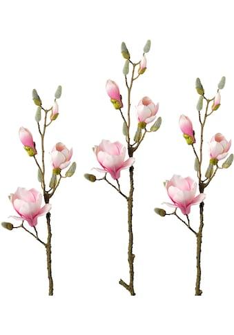 Creativ green Kunstzweig »Zweig Magnolie« (3 Stück) kaufen
