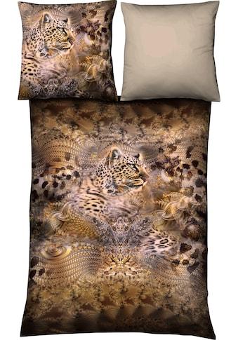 fleuresse Wendebettwäsche »Aspen 4014«, Leoparden Safari kaufen