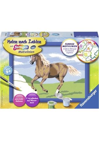 Ravensburger Malen nach Zahlen »Stute Carla«, Made in Europe, FSC® - schützt Wald -... kaufen