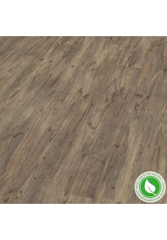 EGGER Designboden »GreenTec EHD026 Carpio Pinie dunkel«, 7,5mm, 1,995m² kaufen