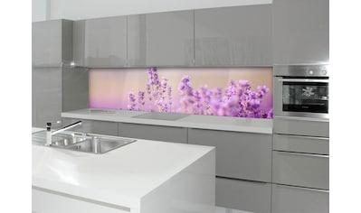 Küchenrückwand  -  Spritzschutz »profix«, Lavendelfeld, 220x60 cm kaufen