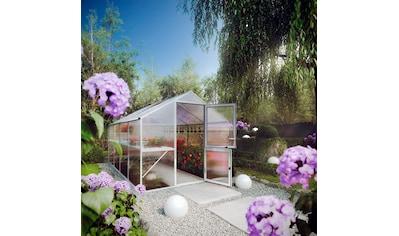 KGT Gewächshaus »Rose IV«, BxT: 233x429 cm kaufen