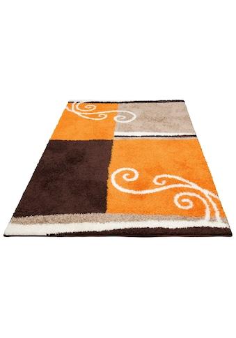 Hochflor - Teppich, »Omar«, DELAVITA, rechteckig, Höhe 30 mm, maschinell gewebt kaufen
