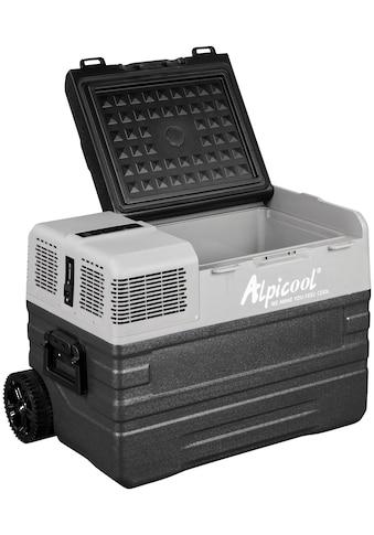 ALPICOOL Elektrische Kühlbox »NX42« kaufen