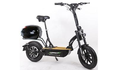 "Forca E-Scooter »Elektroroller ""Eco-Tourer Speed"" 45 km/h Safety«, 45 km/h, 25 km kaufen"