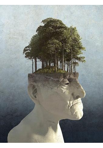 my home Leinwandbild »C. DECKER / Persönliches Wachstum«, (1 St.) kaufen