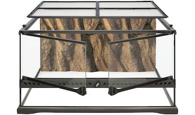 Exo Terra Terrarium »Schlangen Starter Kit«, BxTxH: 66x52x39,5 cm kaufen