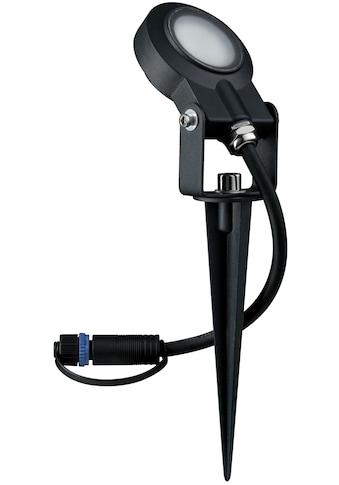 Paulmann,LED Gartenstrahler»Outdoor Plug & Shine Spotlight Sting«, kaufen