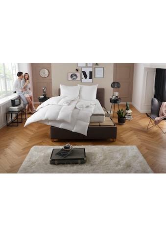 my home Gänsedaunenbettdecke + Kopfkissen »Premium Tim«, (Spar-Set), extra weiches... kaufen