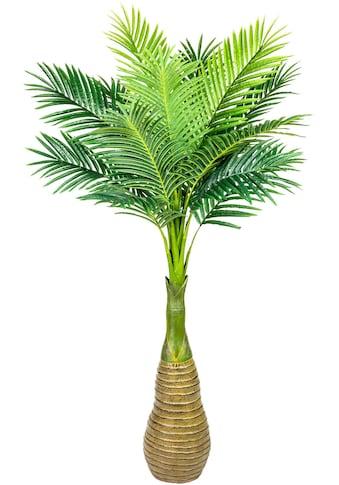 Creativ green Kunstpalme »Flaschenpalme« kaufen