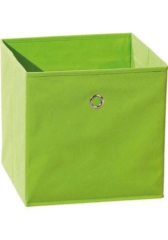 INOSIGN Faltbox »Winny Grün« kaufen
