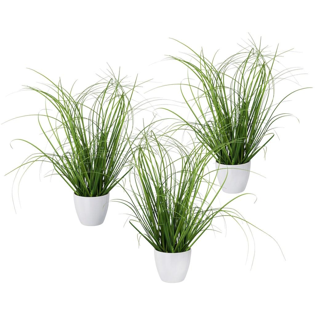 Creativ green Kunstgras »Grasbusch«, 3er Set, im dekorativen Kunststofftopf