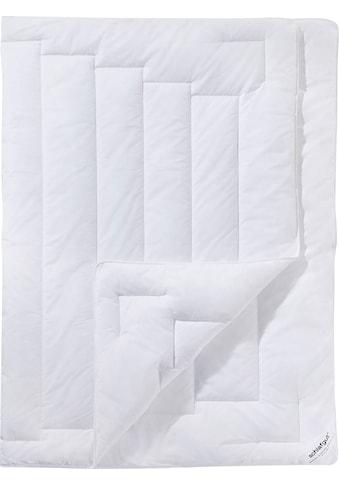 Schlafgut Microfaserbettdecke »Premium«, leicht, (1 St.), bauschkräfitige... kaufen