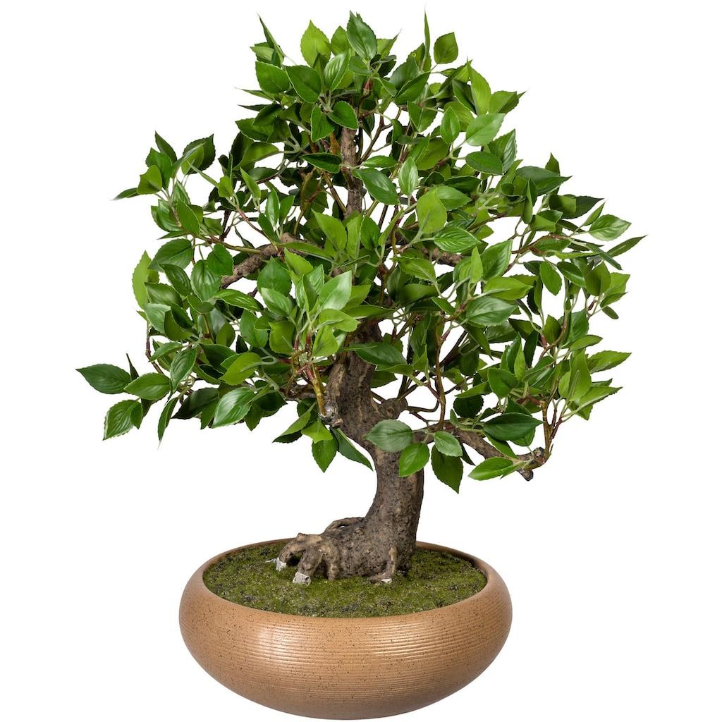 Creativ green Kunstbonsai »Bonsai Ficus« (1 Stück)