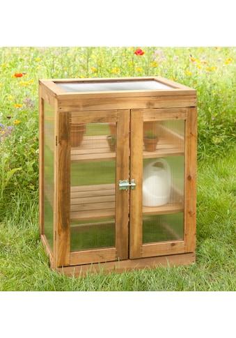 Kiehn-Holz Mehrzweckschrank »Pflanzschrank«, BxTxH: 58x43x76 cm kaufen