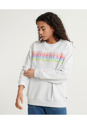 Superdry Sweater »SB RAINBOW PANEL CREW UB« kaufen