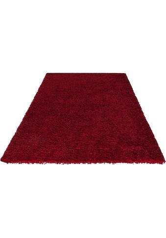 Hochflor - Teppich, »Neta«, Ayyildiz, rechteckig, Höhe 50 mm, maschinell gewebt kaufen