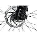 Adore Urbanbike »Bloor«, 24 Gang, Shimano, Acera Schaltwerk, Kettenschaltung
