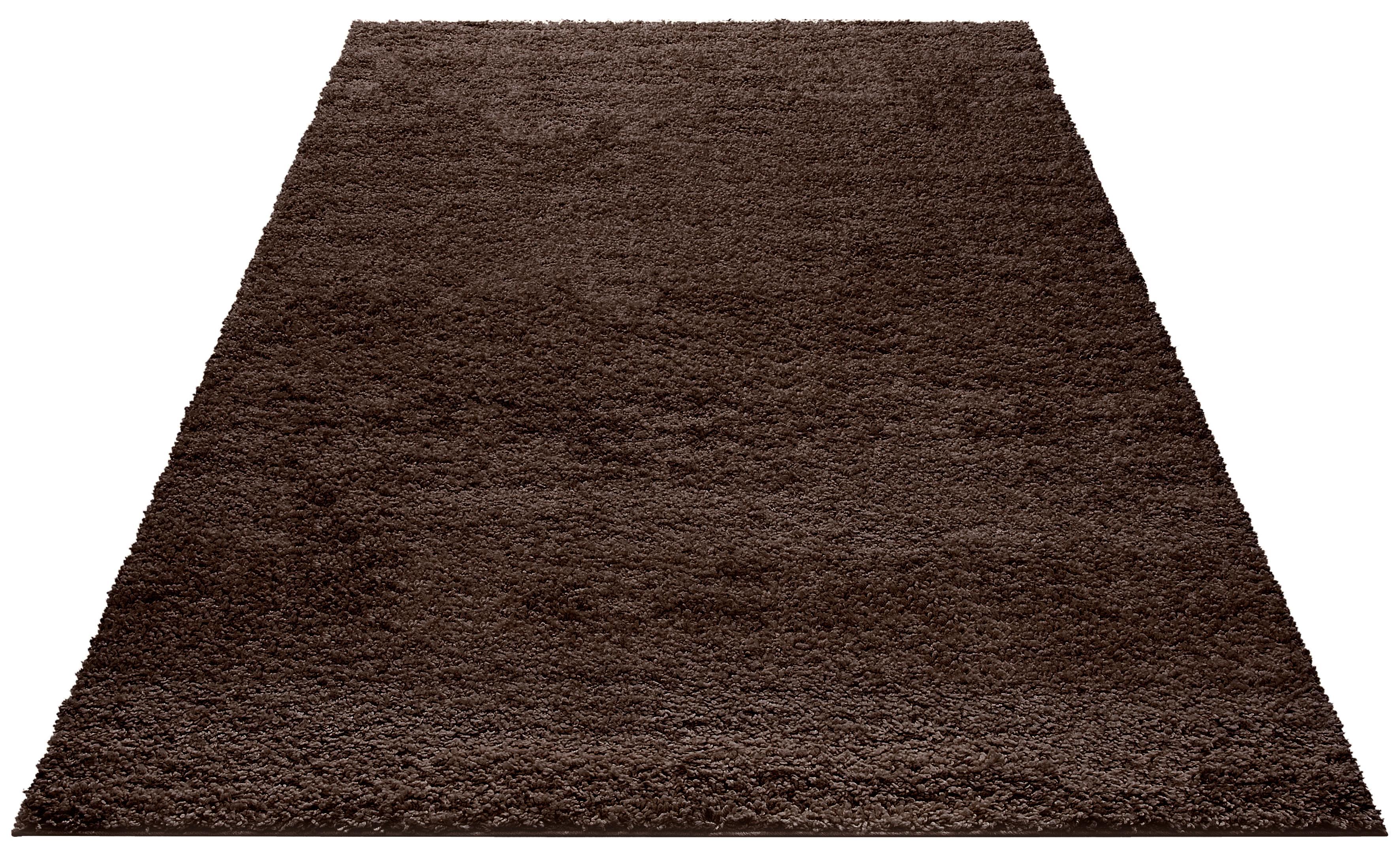 Hochflor-Teppich, »Bodrum«, my home, rechteckig, Höhe 30 mm, maschinell gewebt | Heimtextilien > Teppiche > Hochflorteppiche | Braun | My Home