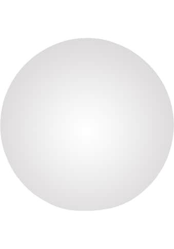 TRIO Leuchten,LED Tischleuchte»DAMIAN«, kaufen