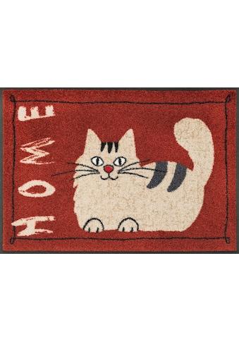 wash+dry by Kleen-Tex Fußmatte »Catty Home«, rechteckig, 7 mm Höhe, Schmutzfangmatte,... kaufen