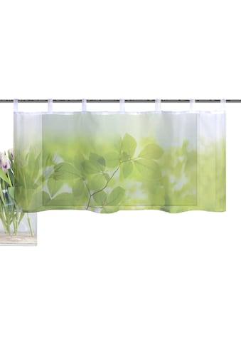 Vision S Scheibengardine »LEAF«, HxB: 45x120, Cafehaus Voile Digitaldruck kaufen
