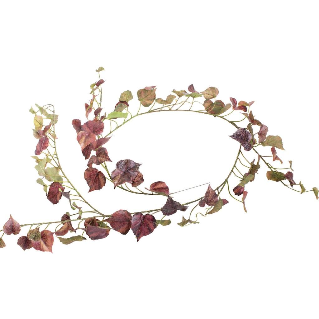 Botanic-Haus Kunstranke »Pappelgirlande«
