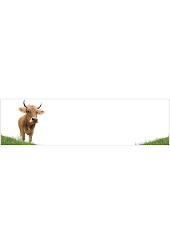 Küchenrückwand  -  Spritzschutz »profix«, Kuh, 220x60 cm kaufen