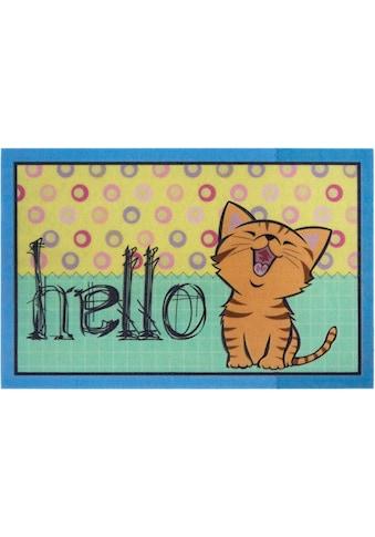 my home Fußmatte »Katze hello«, rechteckig, 6 mm Höhe, Schmutzfangmatte mit Spruch,... kaufen