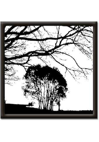 Artland Wandbild »Landschaft« kaufen